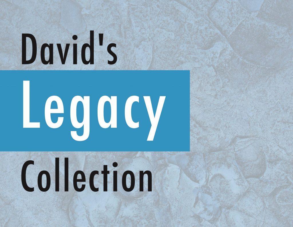 legacy agent marketing portfolio from Senior Marketing Specialists medicare FMO