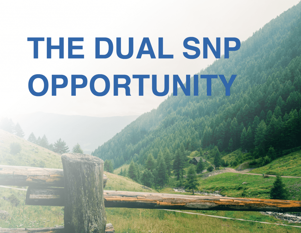 dual snp special needs plans tools for agents from senior marketing specialists medicare FMO