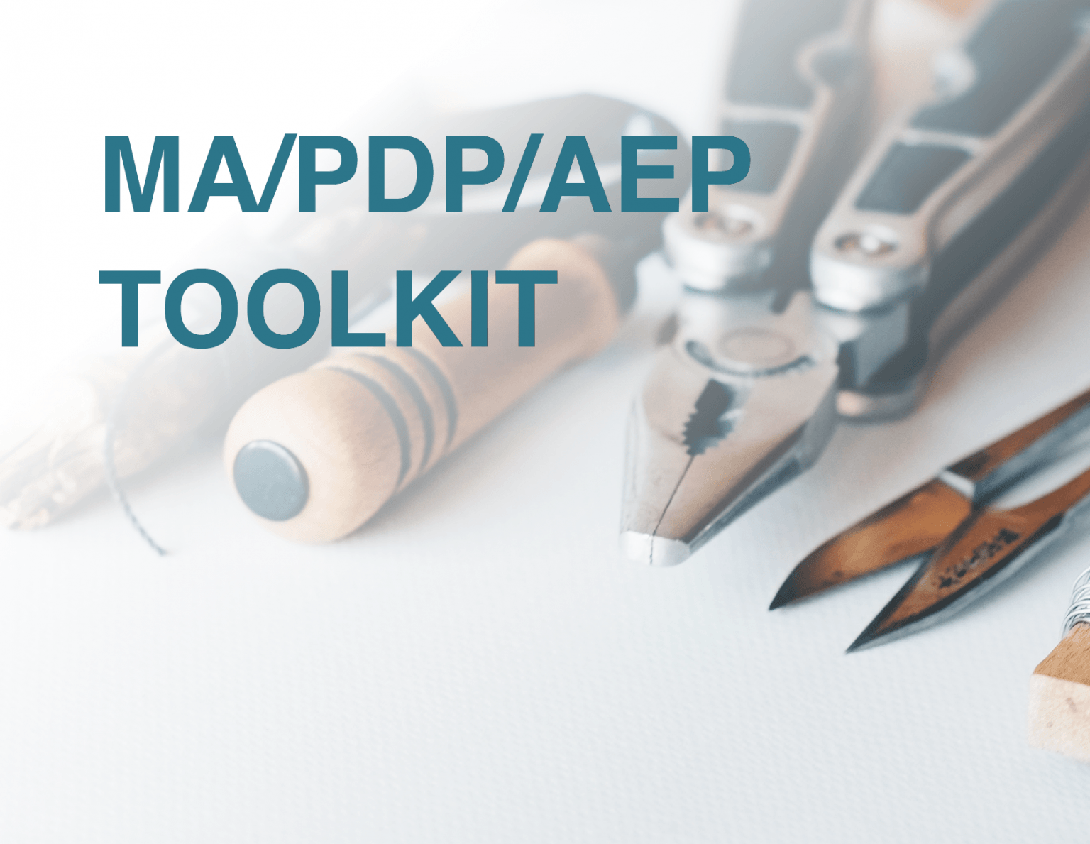 medicare aep agent toolkit from senior marketing specialists medicare FMO